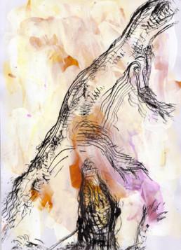 ilustración Bodega Piñol