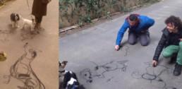dibujando perros